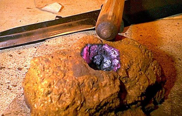 12 Fungus Fireboard